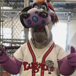 Big Lug stops to pose for a photo at a Lugnuts baseball game.